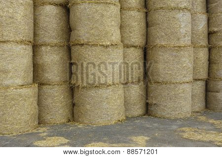 France, Bales Of Straw In Normandie