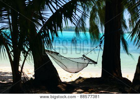 Hammock and palm trees on tropical beach