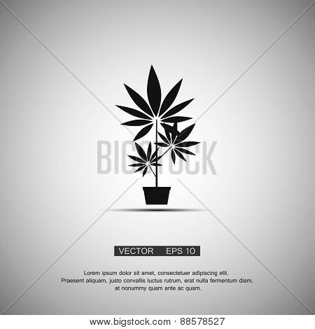Black symbol  marijuana. Vector eps 10