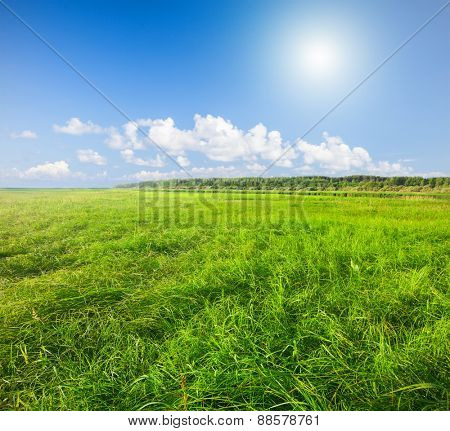 Green field under blue cloudy sky whit sun