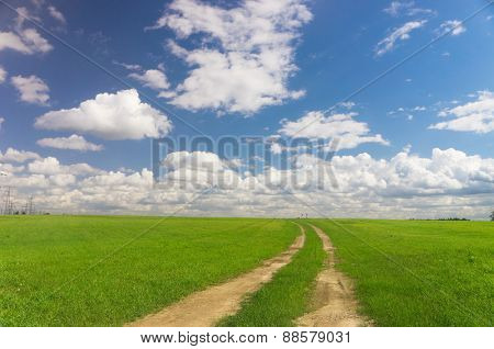 Summer Lawn Way Ahead