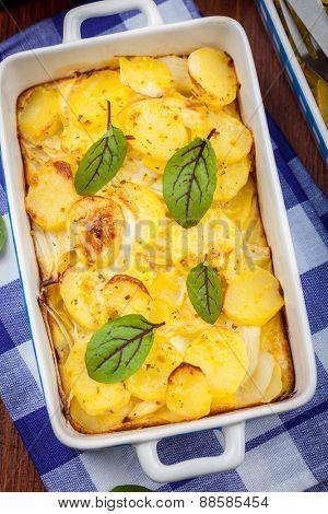 Potato gratin with herbs - top view