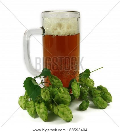 Mug Of Beer And Hops