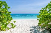 pic of crystal clear  - Crystal clear sea and white sand beach at Tachai island Andaman Thailand