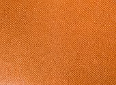 pic of lizard skin  - Artificial leather - JPG