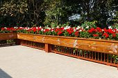 image of bannister  - flowerbed decorating on the wooden bannister of the terrace - JPG