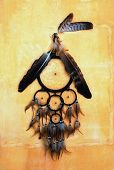 image of dream-catcher  - dream catcher with eagle and raven feathers on orange structure wall - JPG