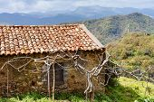 image of abandoned house  - old abandoned country house in Sicilian mountains in spring - JPG