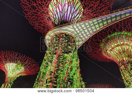 Night Of Gardens By The Bay