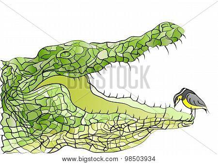 Crocodile And Bird