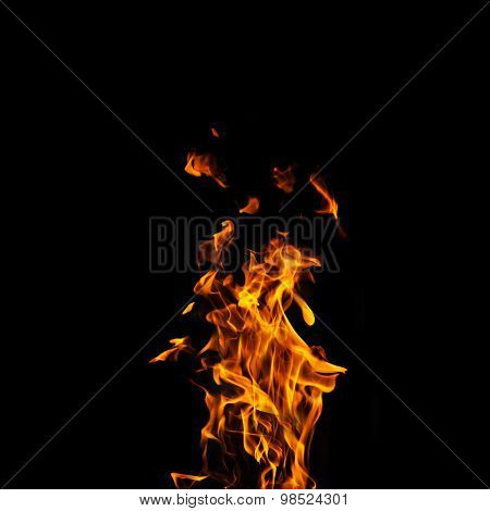 Single Fire Flame On Black Background In High Resolution.