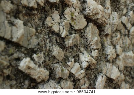 Close Up Perspective Of Igneous Rock Surface Texture