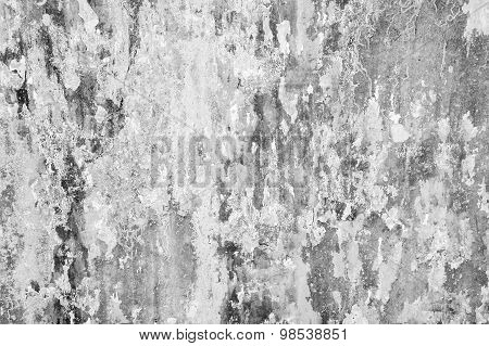 Old Grunge Gray Concrete Wall