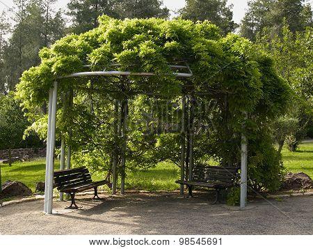 Pergola Gazebo In A Beautiful Garden
