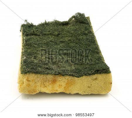 Old Kitchen Sponge On White Background.