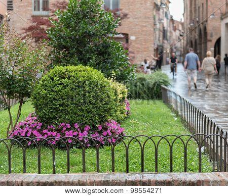 Little Garden Near Th Cathedral Of Ferrara City