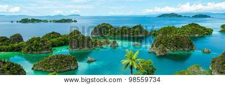 Fam Island in Raja Ampat