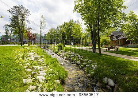 Black Stream Flows Through The City Park