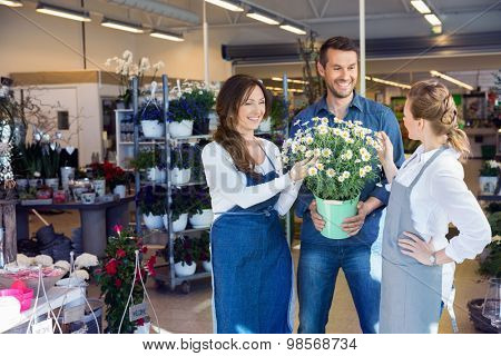 Female florists assisting male customer in buying flower plants at shop