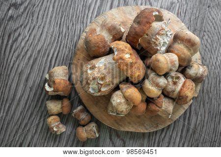 autumn mushroom on wood table