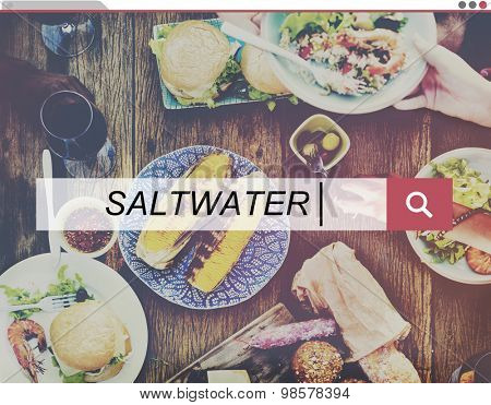 Saltwater Sea Ocean Beach Holiday Vacation Leisure Concept