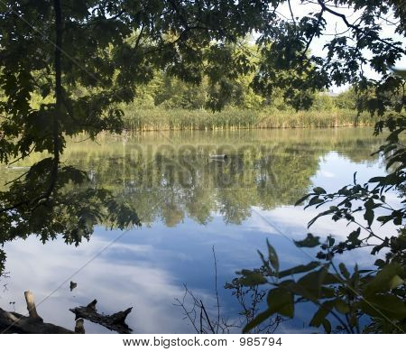 Reflection On Calm Water