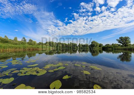 Nice summer landscape on lake