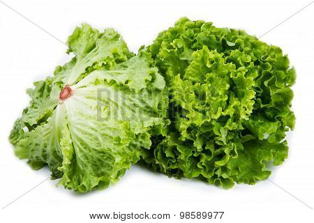 Bunch Of Fresh Green Salad Isolated Over White