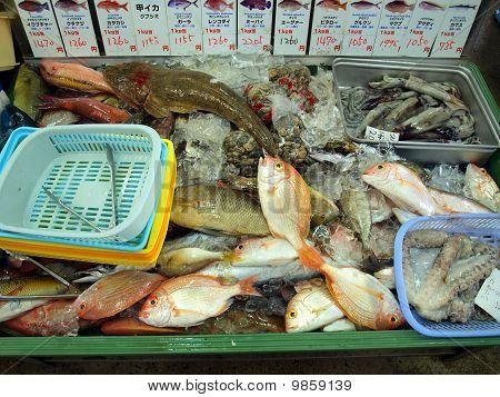 Fish at the market.