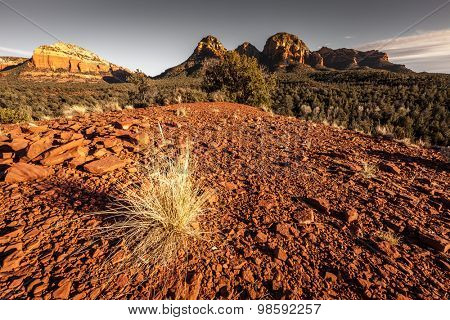 Red Rocks buttes in Sedona, Arizona with a patch of dry grass in the foreground
