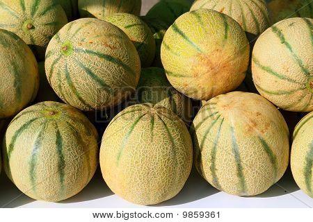 Melone Rock Melon Zuckermelone Spanspek