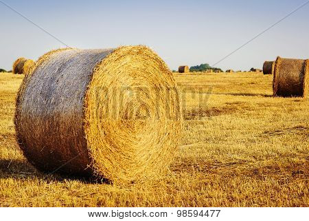 Hay Ball Background.