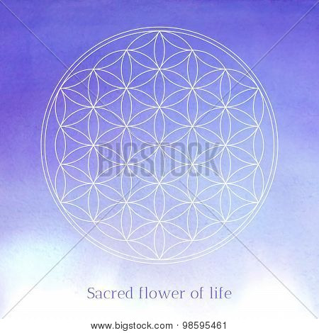Flower of life vector illustration on the watercolor textured background