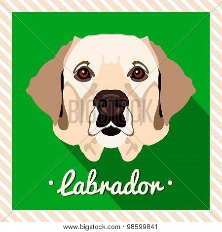 Vector portrait of a labrador dog. Symmetrical portraits of animals. Vector Illustration.