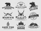Постер, плакат: Set Of Outdoor Wilderness Adventure And Mountain Badge Logo Emblem Logo Label Design