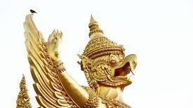 stock photo of garuda  - gold garuda on white background in Thailand - JPG