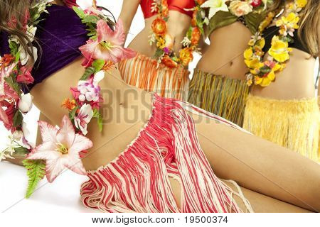 Beautiful hawaiian Hula Dancer Girls