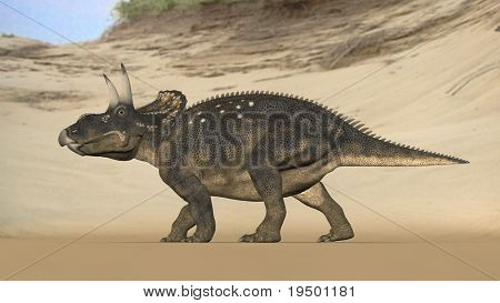 einiosaur on beach