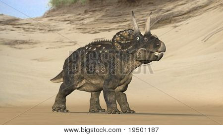 einiosaur on beach