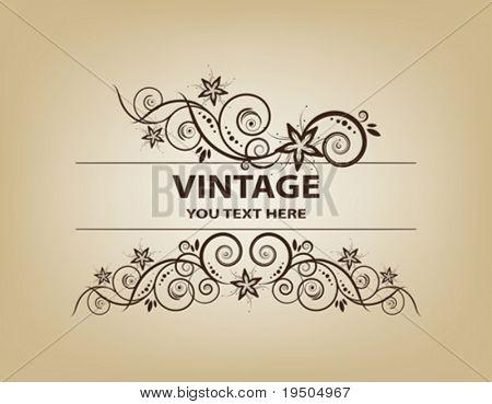 Vintage frame. Elegant. Beige. Asymmetrical