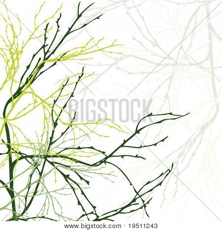 Seamless background Branch.