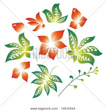 A set of flowers and leaves (version vector 12122476)