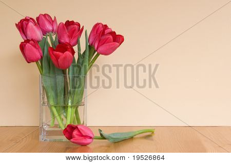red tulips in a vase on table - neutral background