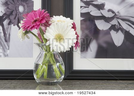 pink and white gerber daisies in vase with b&w daisy art in background