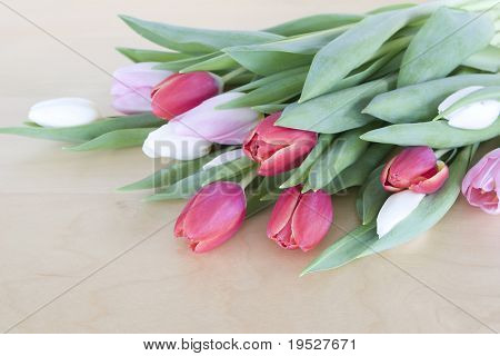 bouquet of red, pink, and white tulips on a wooden background