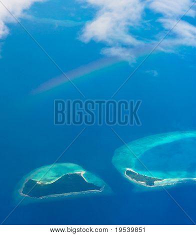 Blue Sea Beauty