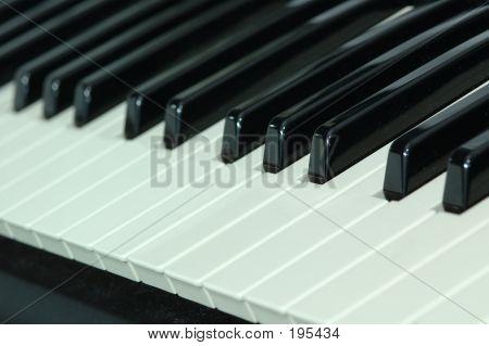 Paino Keys