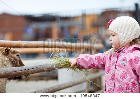 Little girl at farm feeding sheep outdoors on spring day