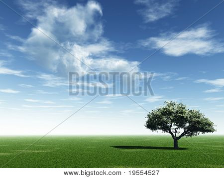 Alone tree and beautiful sky with clouds  - 3d landscape scene.