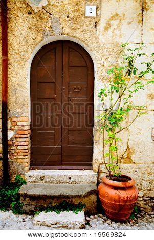 Beautiful old scene of textured grungy european doorway background with terracotta pot plant completing the picture